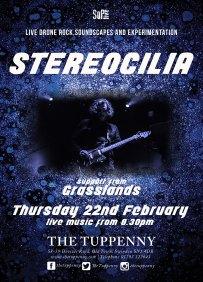 Stereocilia Feb 18 Tupp WEB
